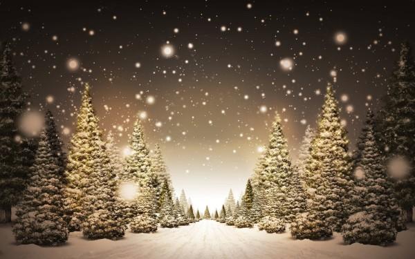 Fabulous_Winter_Night