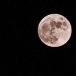 プレゼントに「月の土地」!?|大切な人に月の権利書を送ろう|ルナエンバシージャパン
