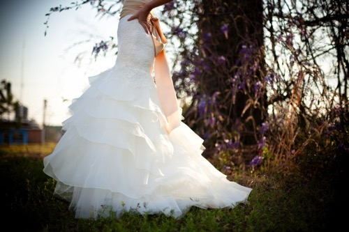 Public domain images free stock photos wedding dress outdoors green grass wisteria vines 1000x666